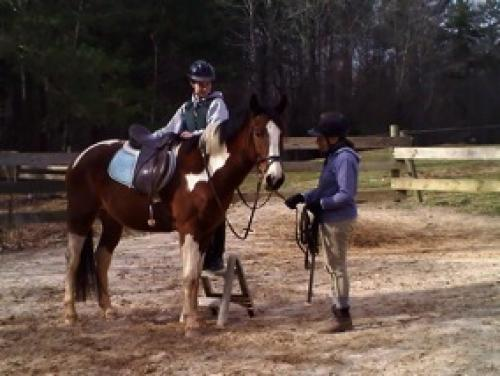 Best Places For Horseback Riding Near Atlanta